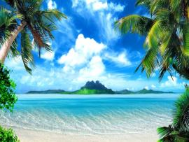 The Above Is Tropical Beach   Backgrounds