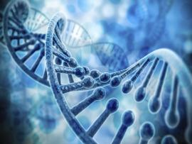 3d Render Of Dna Structure Clip Art Backgrounds