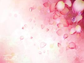 Abstract Pink Flower For PowerPoint Templates Continue   Picture Backgrounds