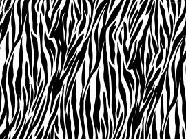 Animal Print Animal Print Jungle Leopard Slides Backgrounds
