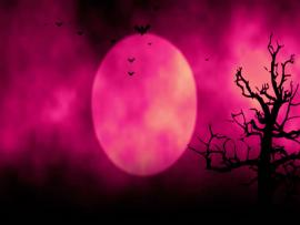 Animated Stylish Useful For Halloweenspooky  image Backgrounds