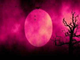 Animated Stylish Useful For Halloweenspooky  image Backgrounds