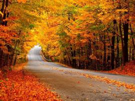 Autumn  Autumn (35867710)  Fanpop Presentation Backgrounds