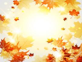 Autumn Leaves Bright Autumn Leaves Vector 06   Graphic Backgrounds