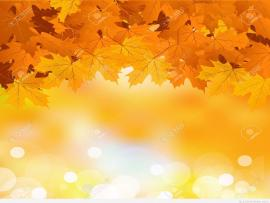 Autumn Leaves Photo Backgrounds