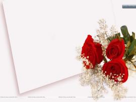 Background Wedding Pics Wedding Wallpaper Backgrounds