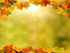 Background With Autumn Leaves Art Backgrounds