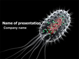 Bacteria Cell PowerPoint Template  03573   Slides Backgrounds