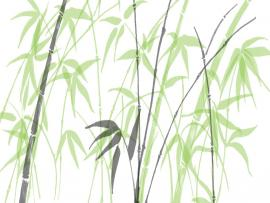 Bamboo Clipart Backgrounds