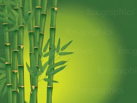 Bamboo Frame Backgrounds