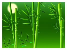 Bamboo Green With Sun Design Backgrounds