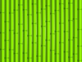 Bamboo Textured Backgrounds