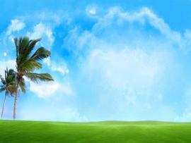 Banana Tree Sky Blue Clip Art Backgrounds