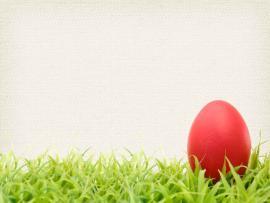 Banner Easter Der Easter Egg Picture Backgrounds