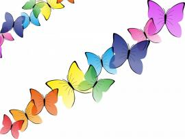 Beautiful Butterflies   Animals Multi Color  Clip Art Backgrounds