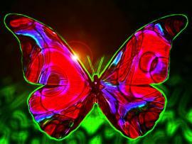 Beautiful Butterflies Art Backgrounds