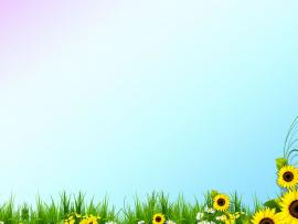 Beautiful Spring Template Template Backgrounds