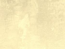 Beige Lace      Template Backgrounds