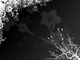 Black and Whiteart Backgrounds