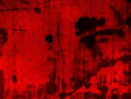Blood Slides Backgrounds