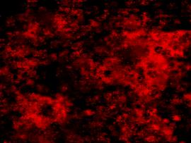 Blood Splatter Black Gif Okay~~ My Beloved British Photo Backgrounds
