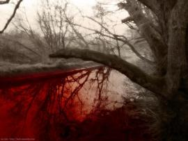 Bloody Tree Frame Backgrounds