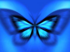Blue Butterfly Art Graphic Backgrounds