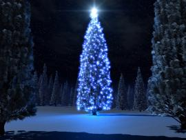 Blue Christmas Tree Picture Backgrounds