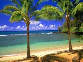 Blue Hd Hawaii Clip Art Backgrounds