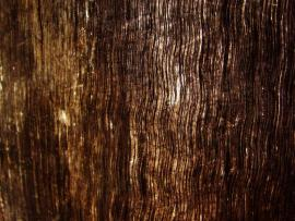 Bright Wood Grains Hd Backgrounds