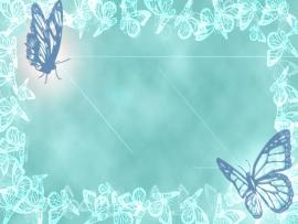 Butterflies Picture Backgrounds