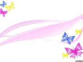 Butterflies Templates Design Backgrounds