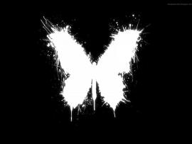 Butterfly Black and White Clip Art Backgrounds