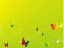 Butterfly For Butterfly Presentation Backgrounds