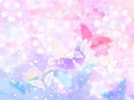Butterfly Hd Slides Backgrounds