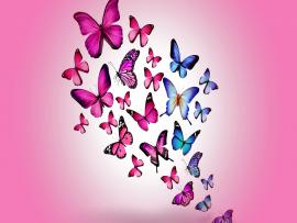 Butterfly Pink Art Backgrounds