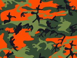 Camo  Cave Backgrounds