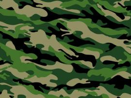 Camo Slides Backgrounds