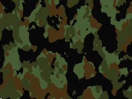 Camouflage Desktops Photo Backgrounds
