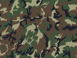 Camouflage pattern Backgrounds