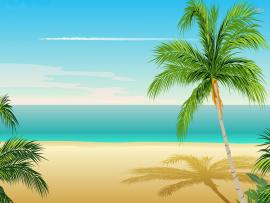 Cartoon Beach Palm Tree Download Backgrounds