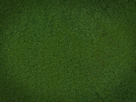Cartoon Grass Image Search Results image Backgrounds