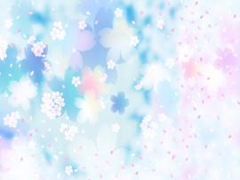 Cherry Blossom Flower Download Backgrounds