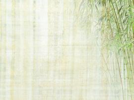 Chinese Chinese Style Chinese image Backgrounds