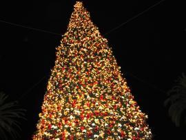 Christmas Tree Hd Christmas Tree   Presentation Backgrounds