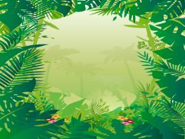 Clipart Jungle & Pictures  Becuo Photo Backgrounds