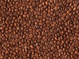Coffee Beans Design Backgrounds