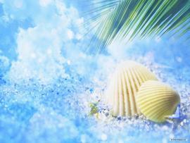 Cool Summer For Desktop Clip Art Backgrounds