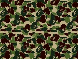 Descriptions Camo Is A Hi Res For Pc Desktops   Wallpaper Backgrounds