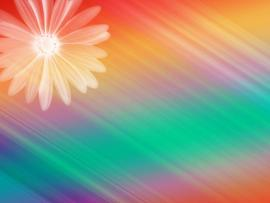 Design Rainbow Lorful Image You Can Use PowerPoint   Slides Backgrounds